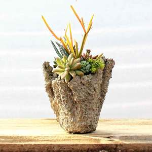 05.17 Concrete Succulent Planter Party 11a